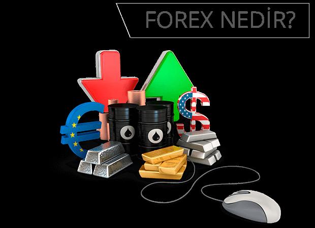 Forex yatırım nedir