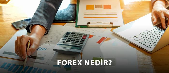 Yeni Başlayanlar İçin Forex Nedir?